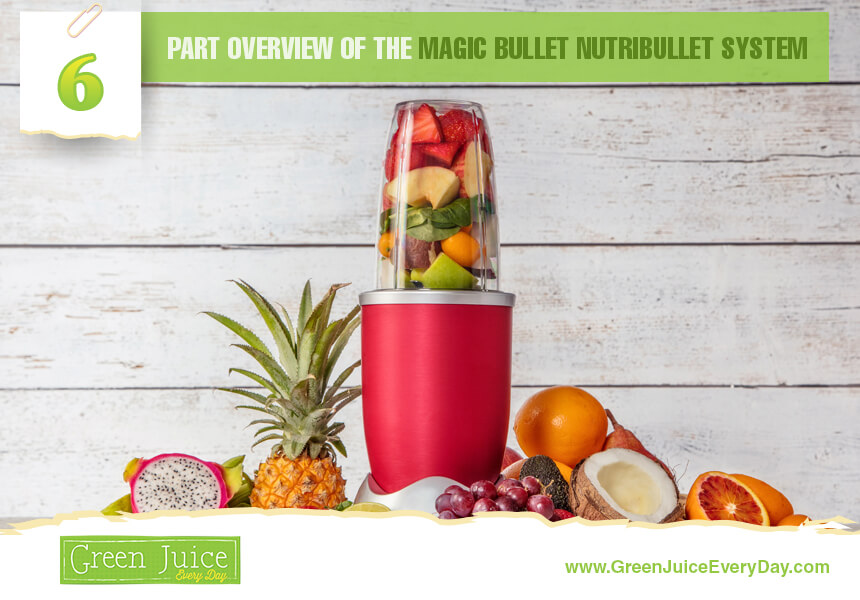 nutribullet pieces